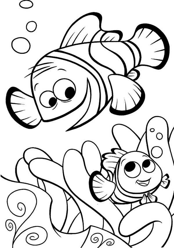 free crush finding nemo coloring pages