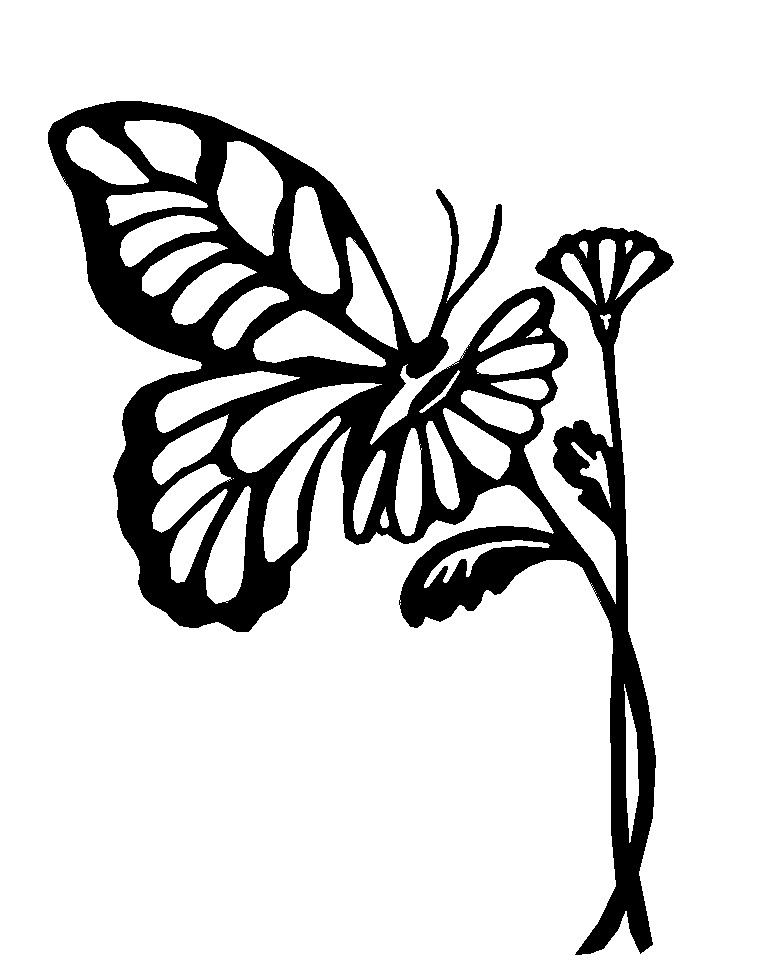 butterfly outline clip art clipartsco