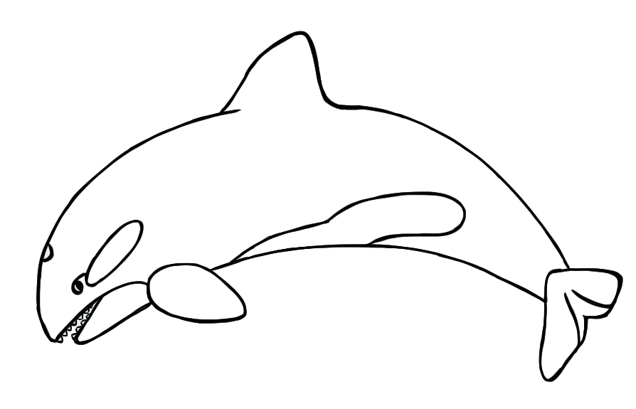 Whales Clipart - Cliparts.co