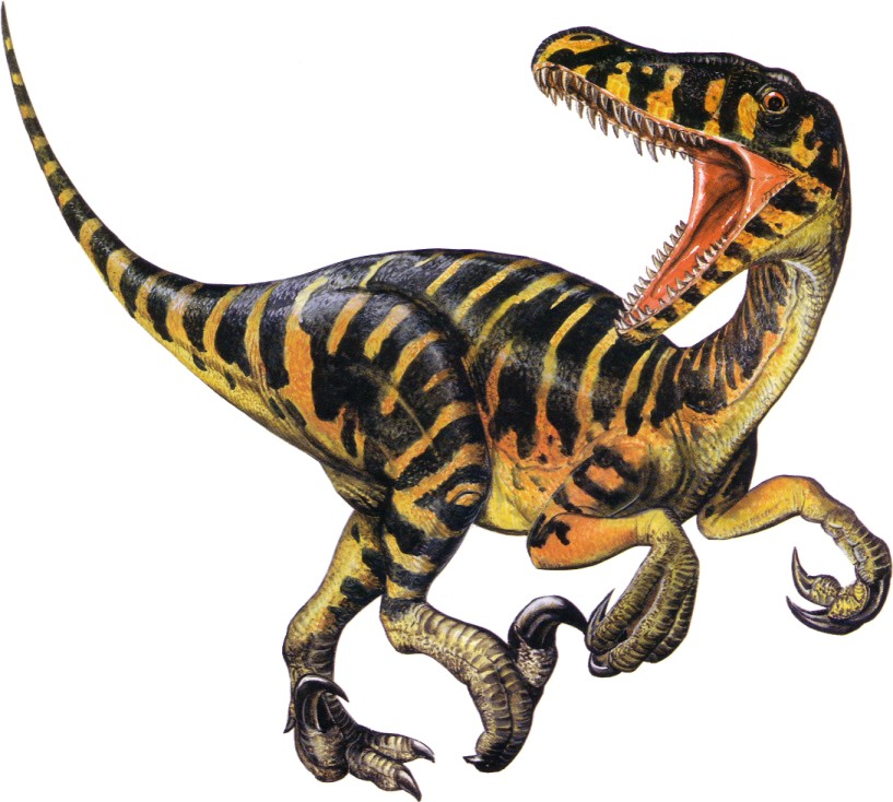 Pictures Of Dino