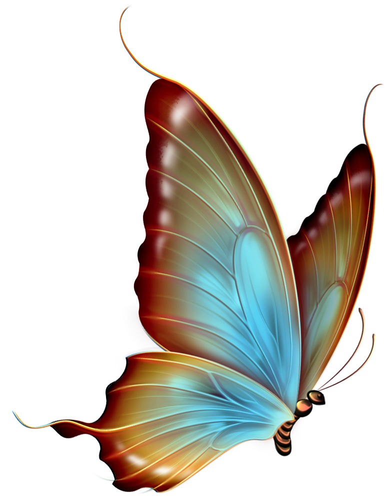 butterfly clip art free clipartsco
