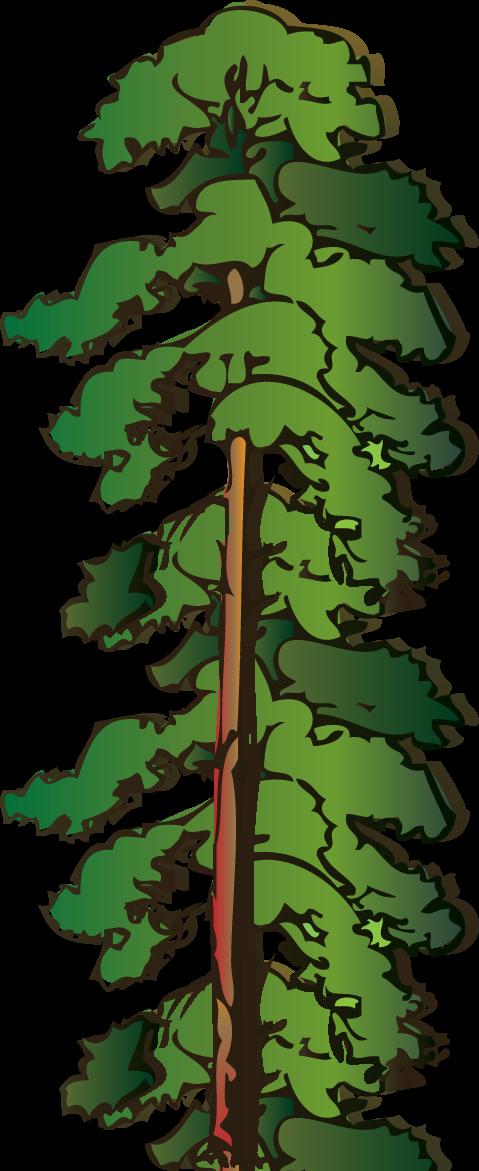 clipart of tree - photo #42