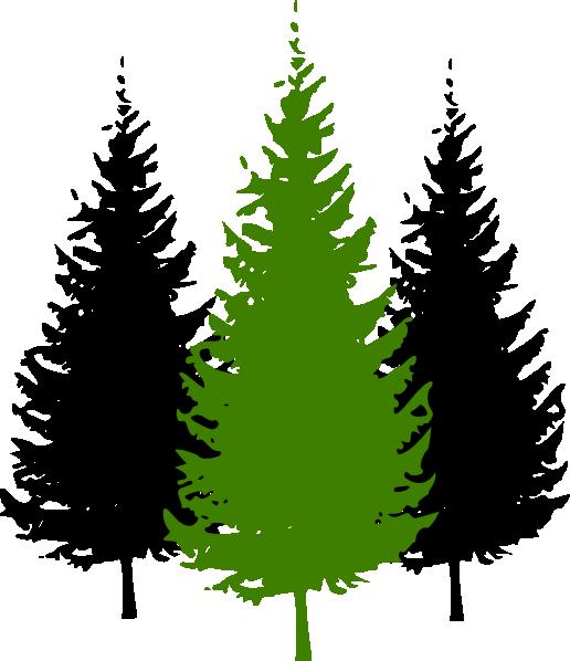 Redwood Tree Clip Art - Cliparts.co