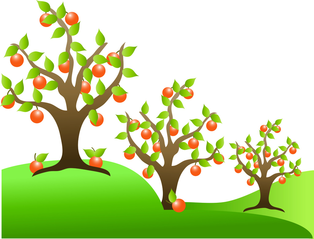 Fruit Tree Clip Art - Cliparts.co