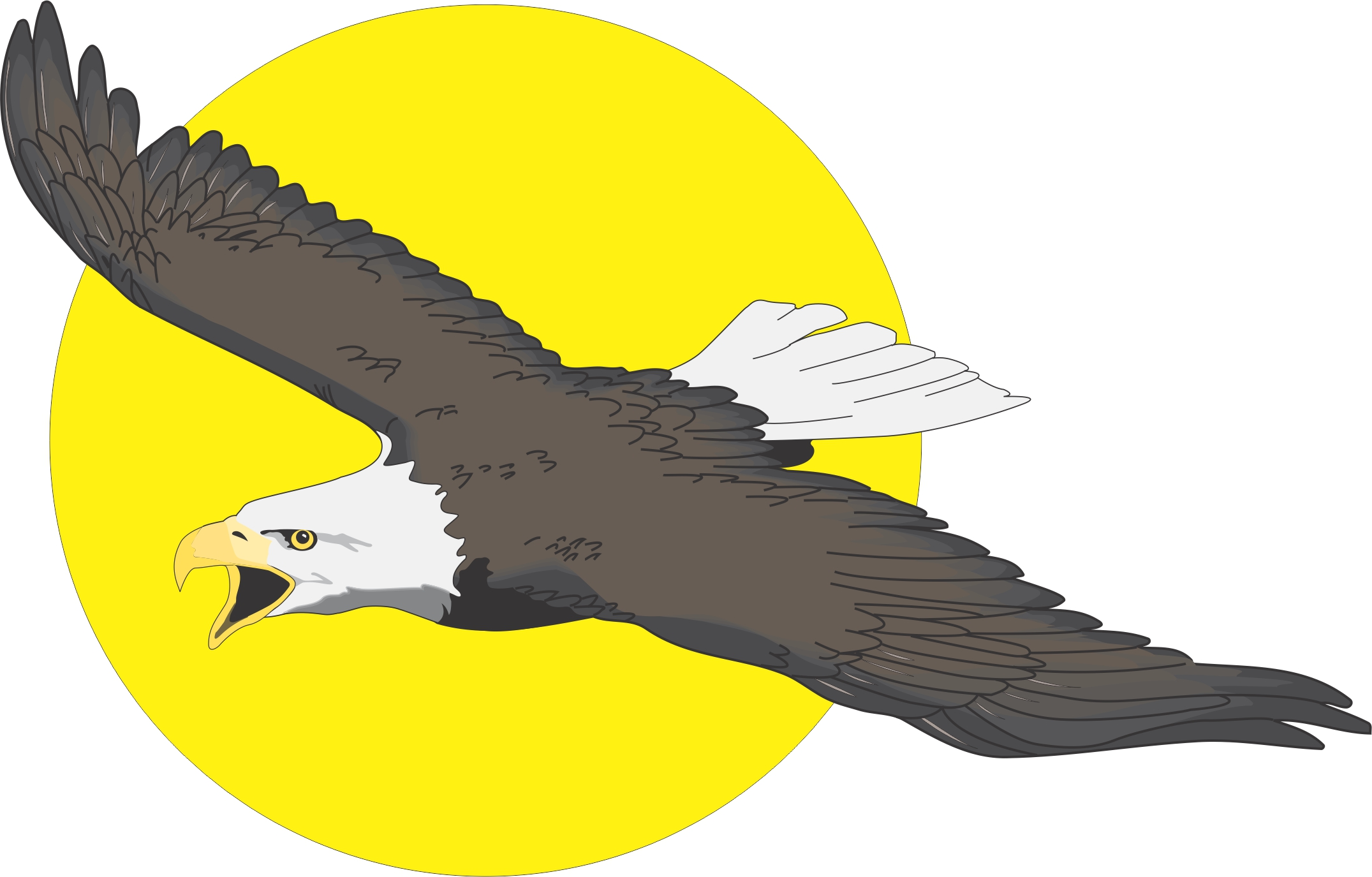 flying eagle clip art - photo #14