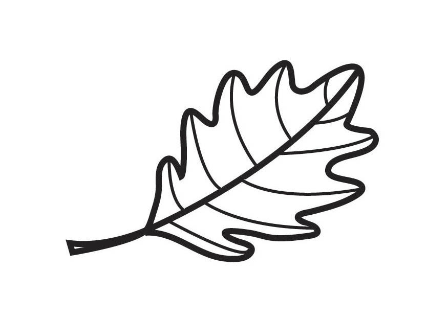 Oak Leaf Coloring Page Printable Pages from KinderArt and