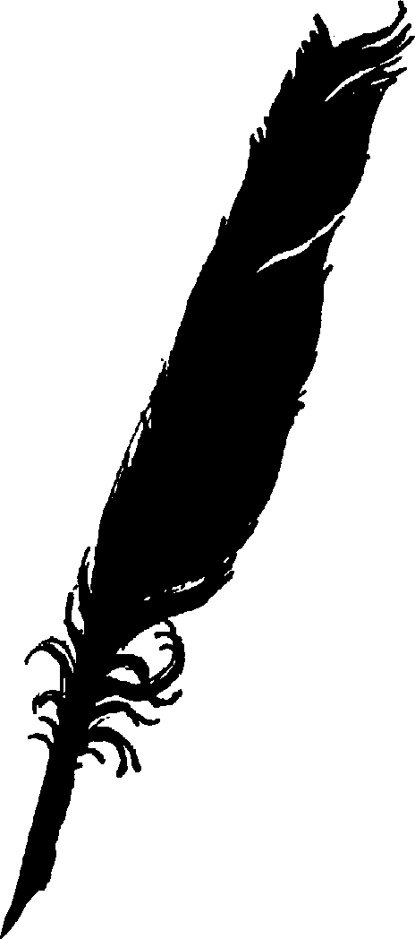 Eagle feather clip art