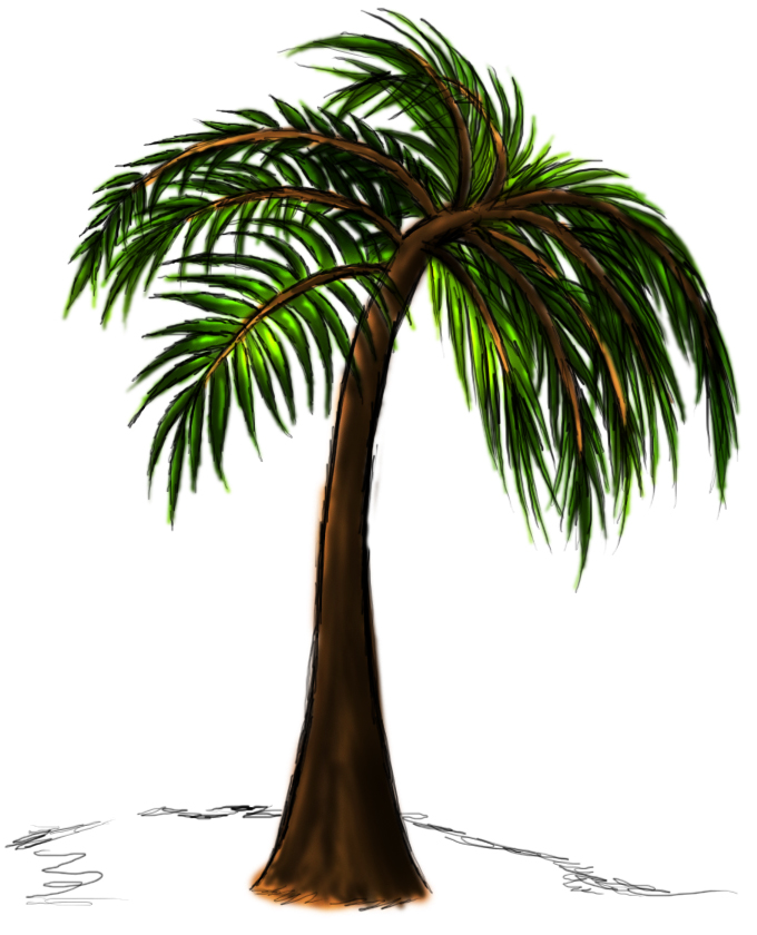 Line Drawing Palm Tree : Palm trees drawings cliparts