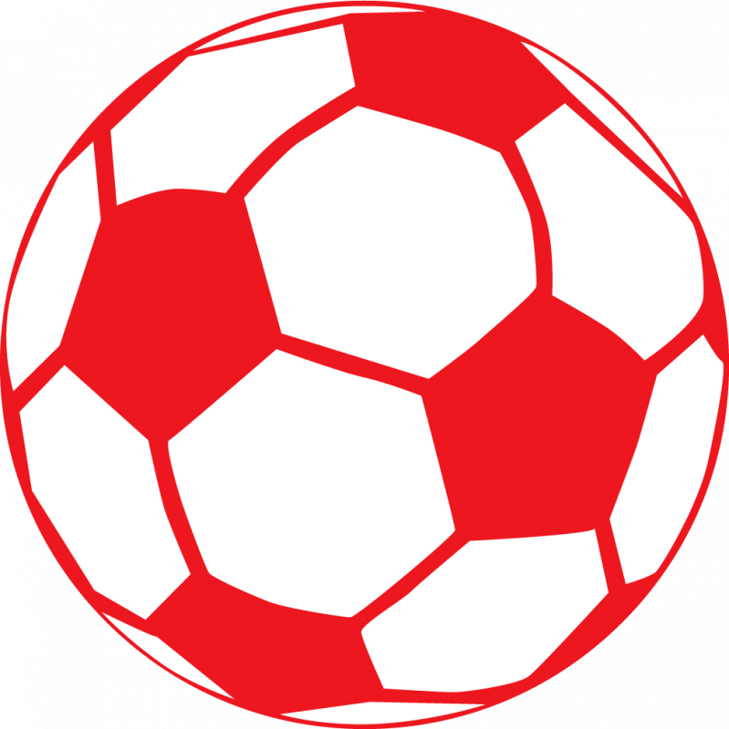 Custom Soccer Ball Shaped Car Magnets
