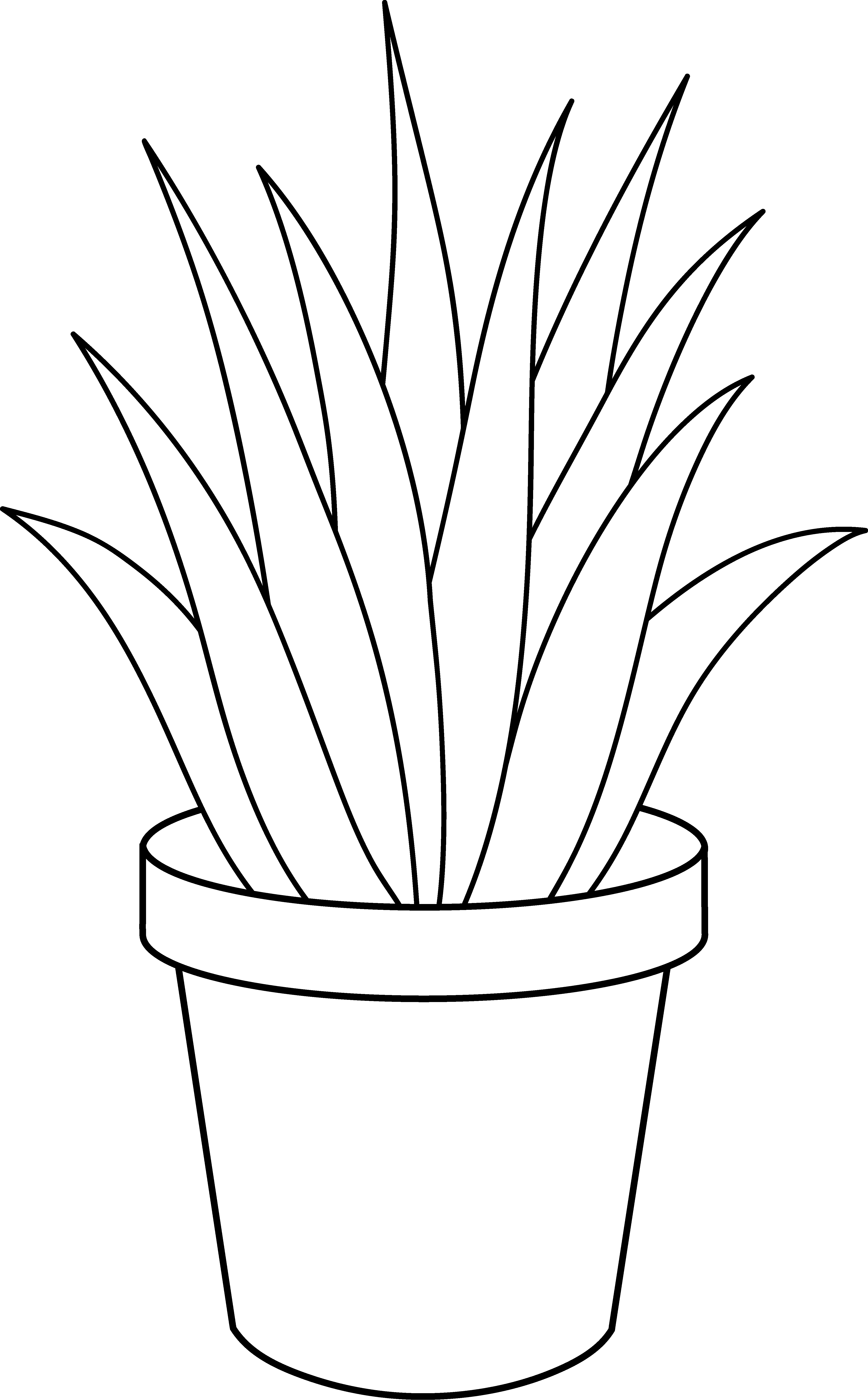 Line Drawing Of Flower Pot : Potted plant cliparts