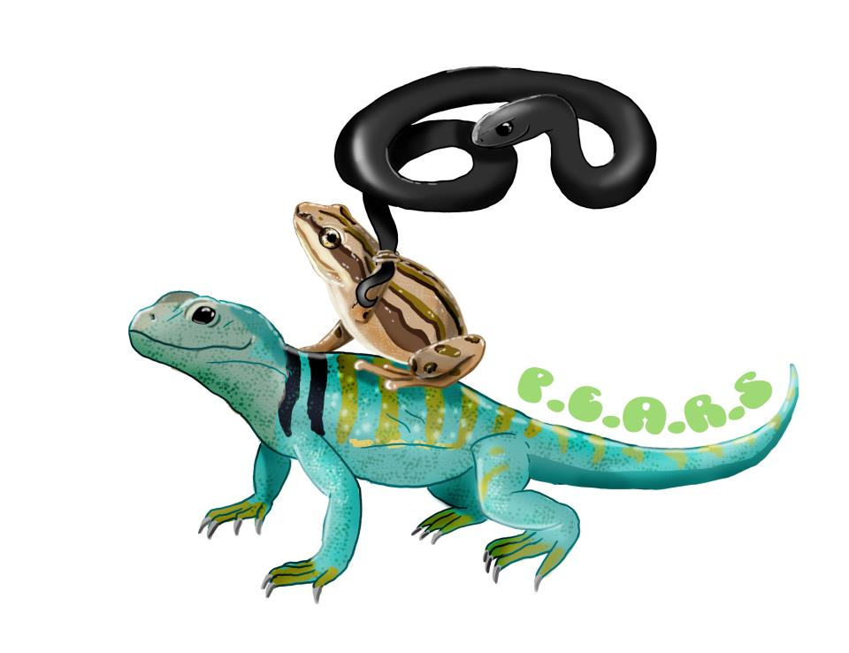 Pictures Of Reptiles For Kids - Cliparts.co