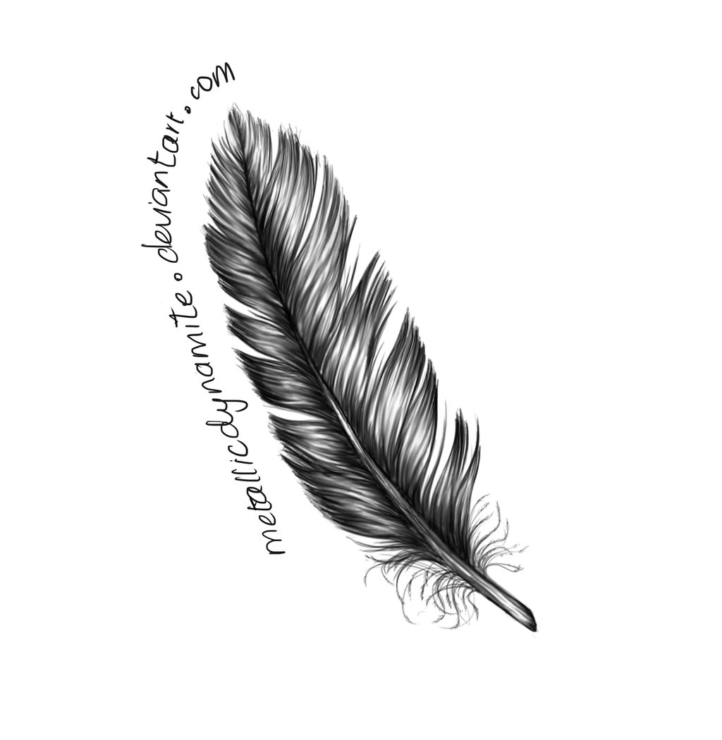 Modern Simple Feather Design Feather Logo Cartoon PNG