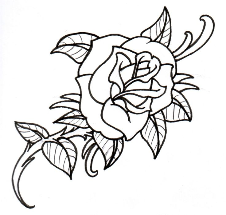 Line Drawing Rose Tattoo : Rose line art cliparts