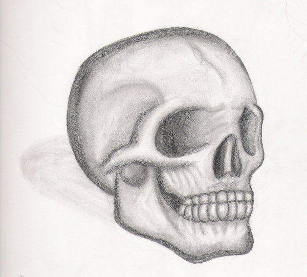 simple skull drawings clipartsco