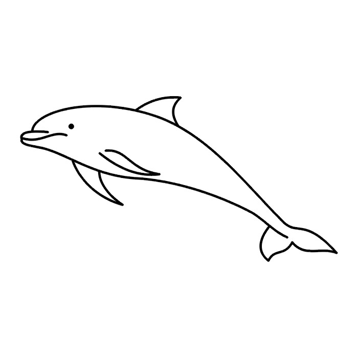 Black And White Dolphin Pictures - Cliparts.co