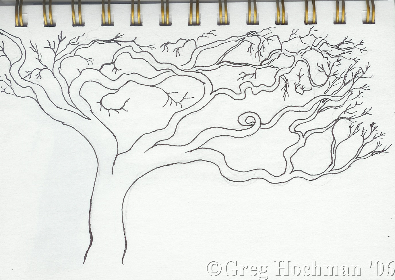 tree drawings cliparts co