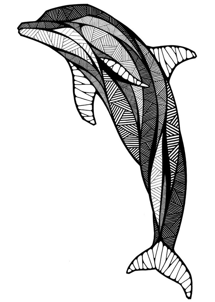 Line Drawing Dolphin : Dolphin line art cliparts