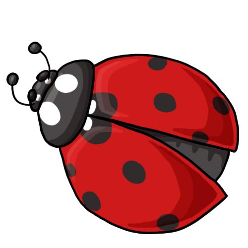 clip art of a ladybug - photo #25