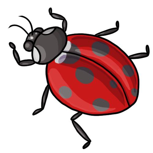 free cartoon ladybug clipart - photo #50
