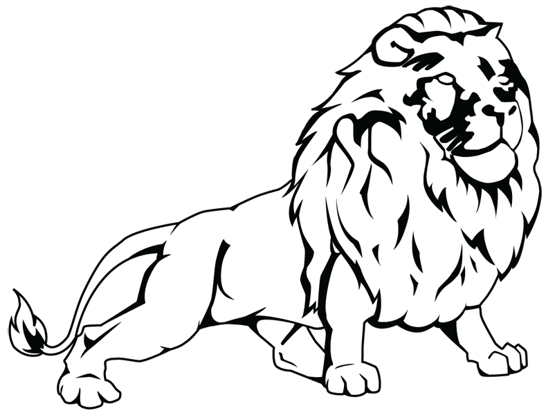 Line Art Lion : Lion line drawing logo
