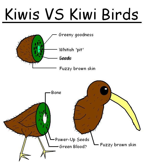 Kiwi Bird Tattoo - Cli...