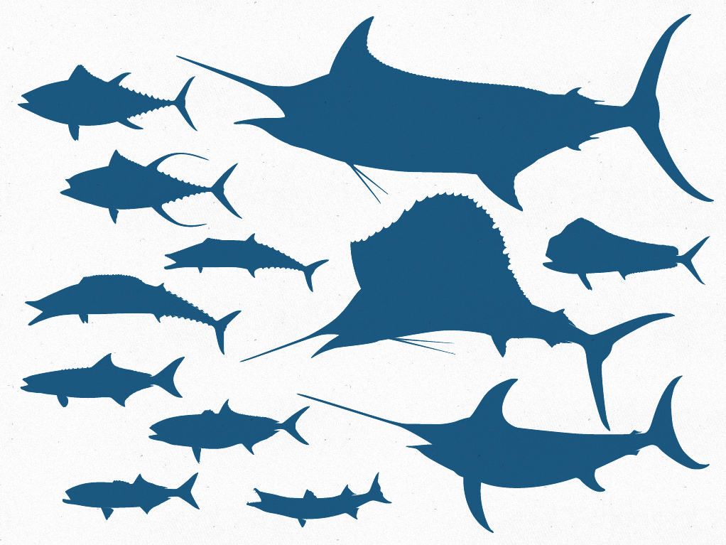 Free Vector File – 12 Offshore Game Fish Silhouettes | The ...