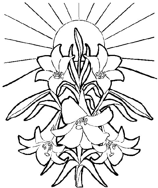 easter lilies free clipart - photo #9