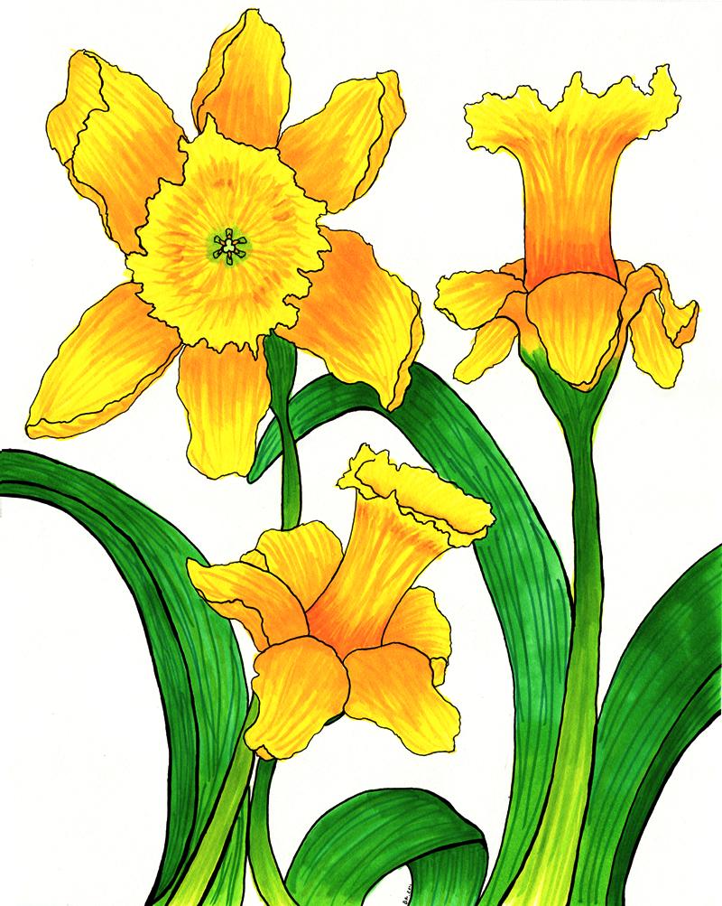 Spring Flower Clipart Tumundografico Picture Of Cartoon