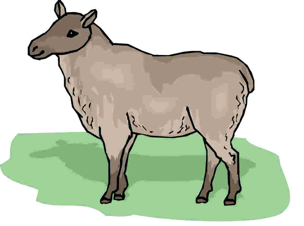cartoon sheep face cliparts co livestock clipart, cow, pig, sheep, goat livestock clip art lined up