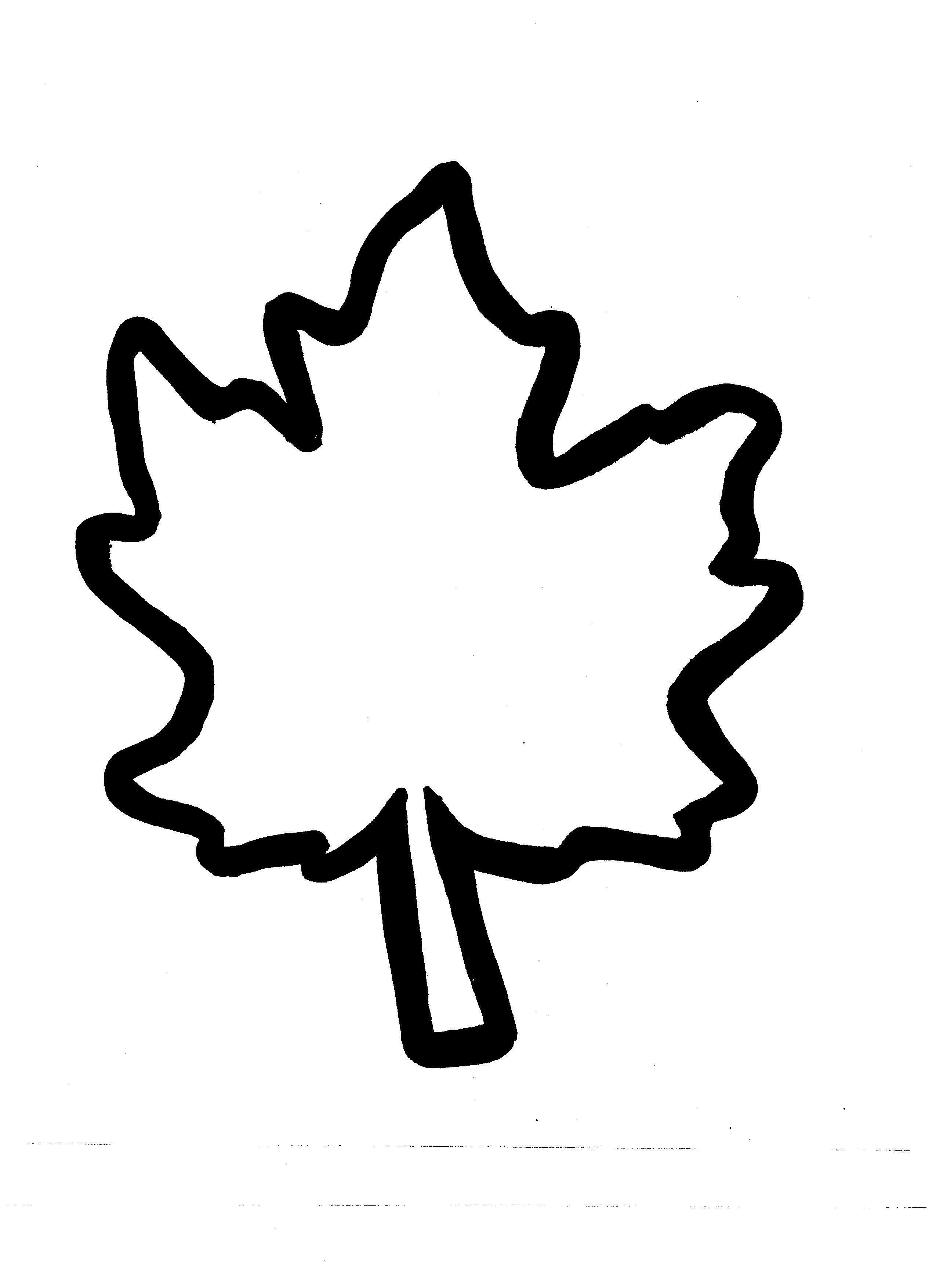 Autumn Leaf Outline - Cliparts.co