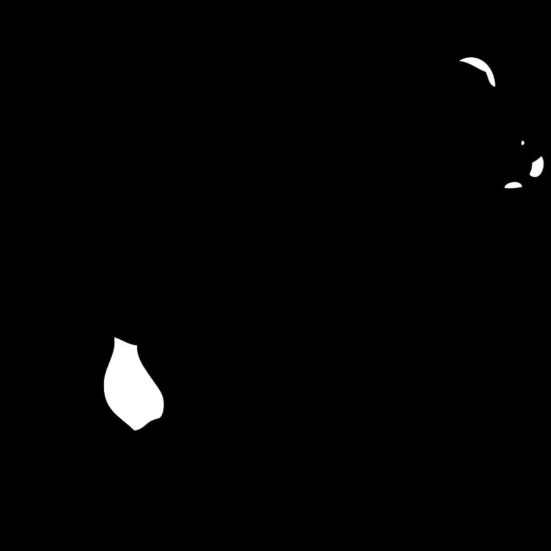 White Bear Cartoon - Cliparts.co