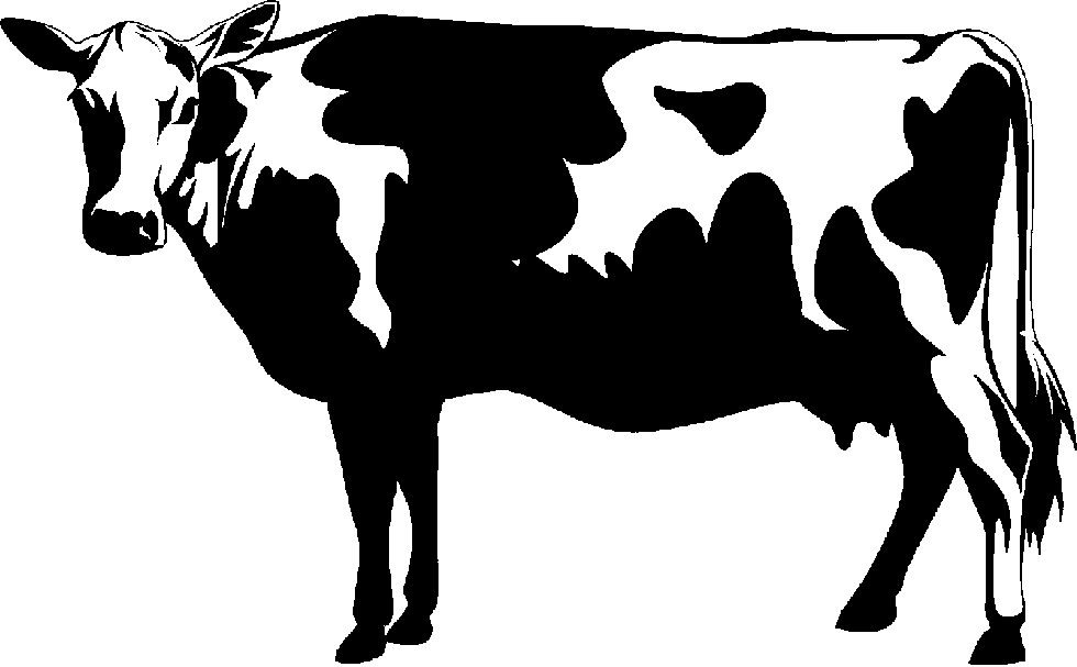 Cow Graphics - Cliparts.co