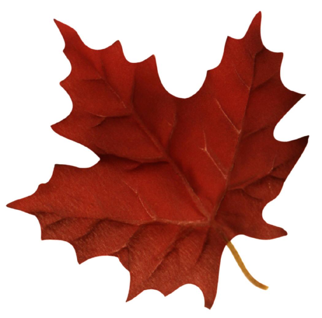 Air Canada  Wikipedia