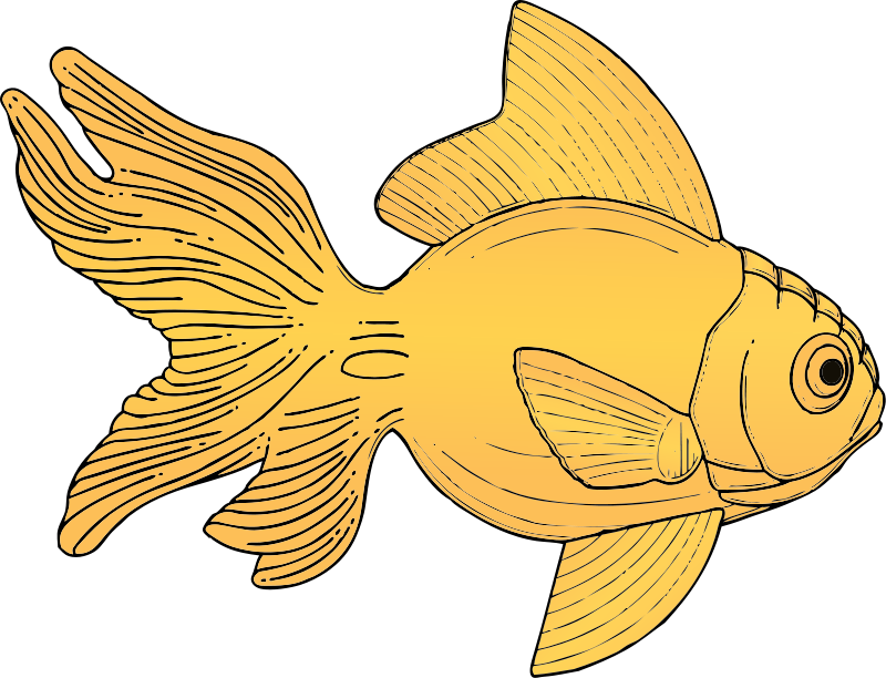 Fish Art Pictures - Cliparts.co