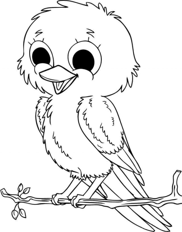 Animal Birds Coloring Sheets Free Printable For Preschool 7213 Rhclipartsco: Coloring Sheets For Bird Watching At Baymontmadison.com