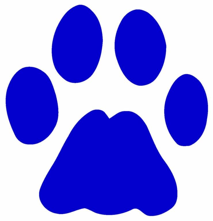 Red Dog Wd Club