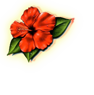 Samoan Flower Tattoo  Clipartsco
