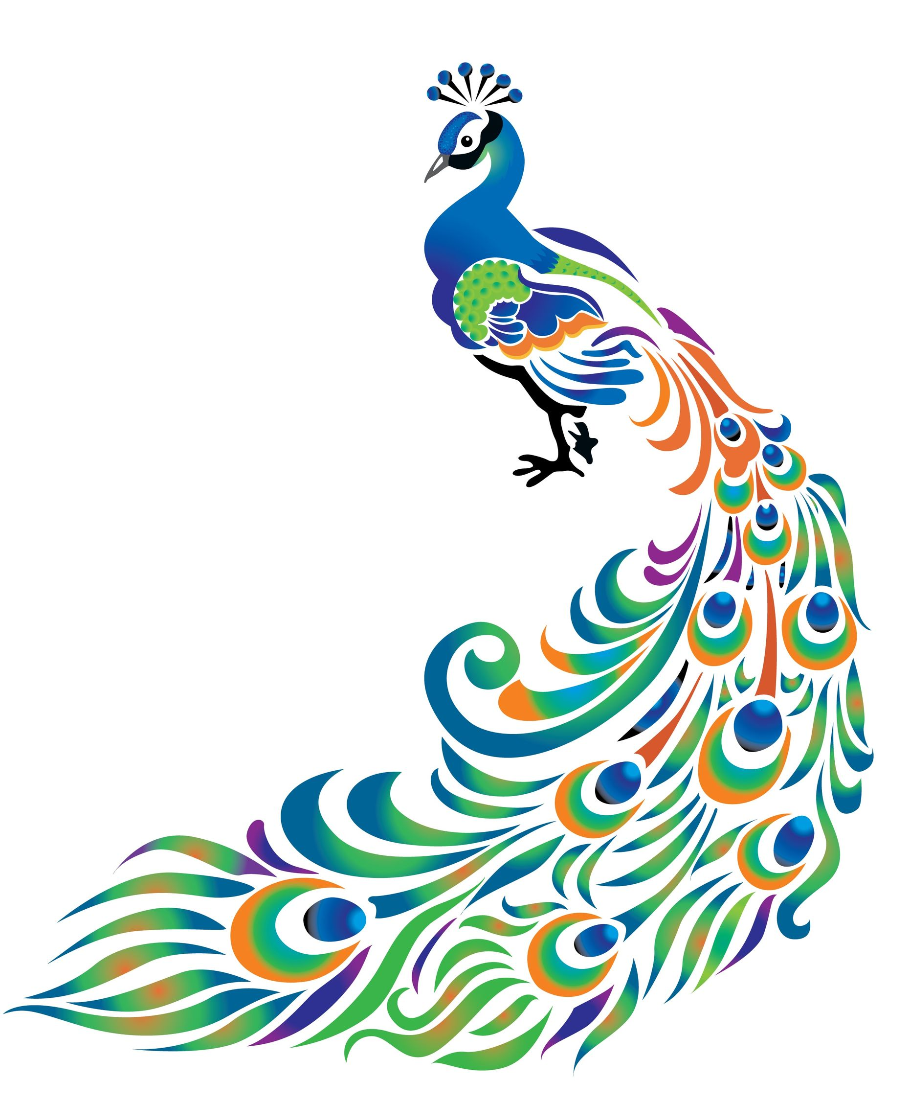 Ganesh rangoli designs coloring pages - Peacock Feather Border Designs