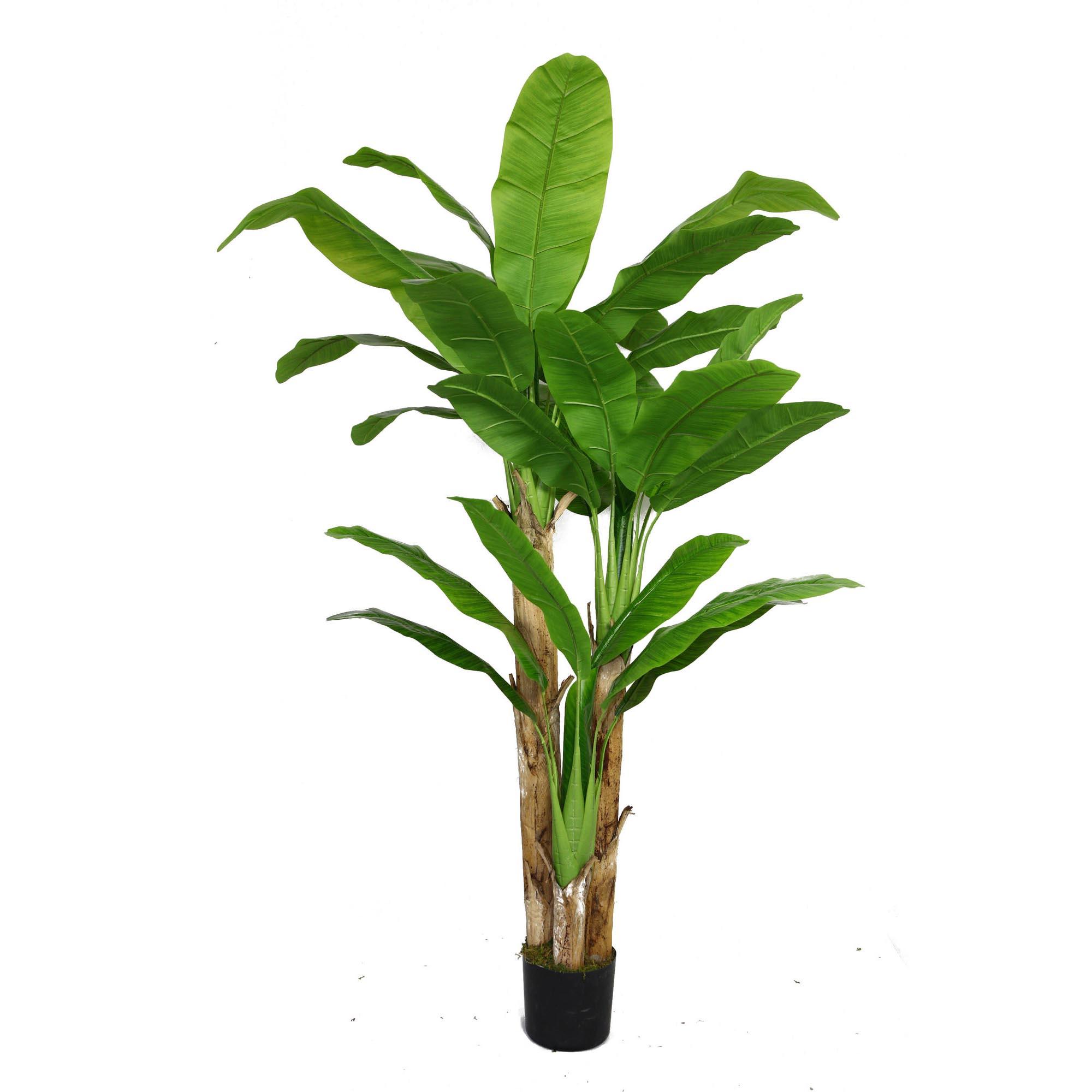 Banana tree for Artificial banana leaves decoration