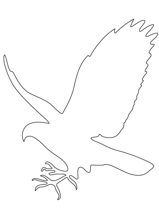 Falcon Outline Images Amp Pictures Becuo Cliparts Co