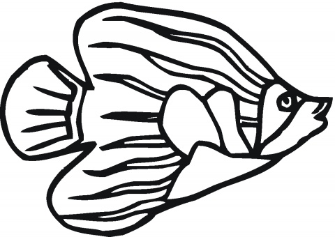 Fish in Seaweed coloring page | Super Coloring - ClipArt Best ...