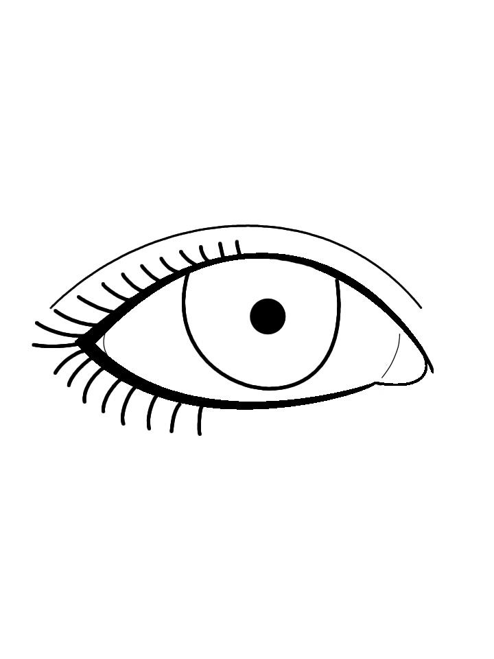 Line Art Eyes : Eye line art cliparts