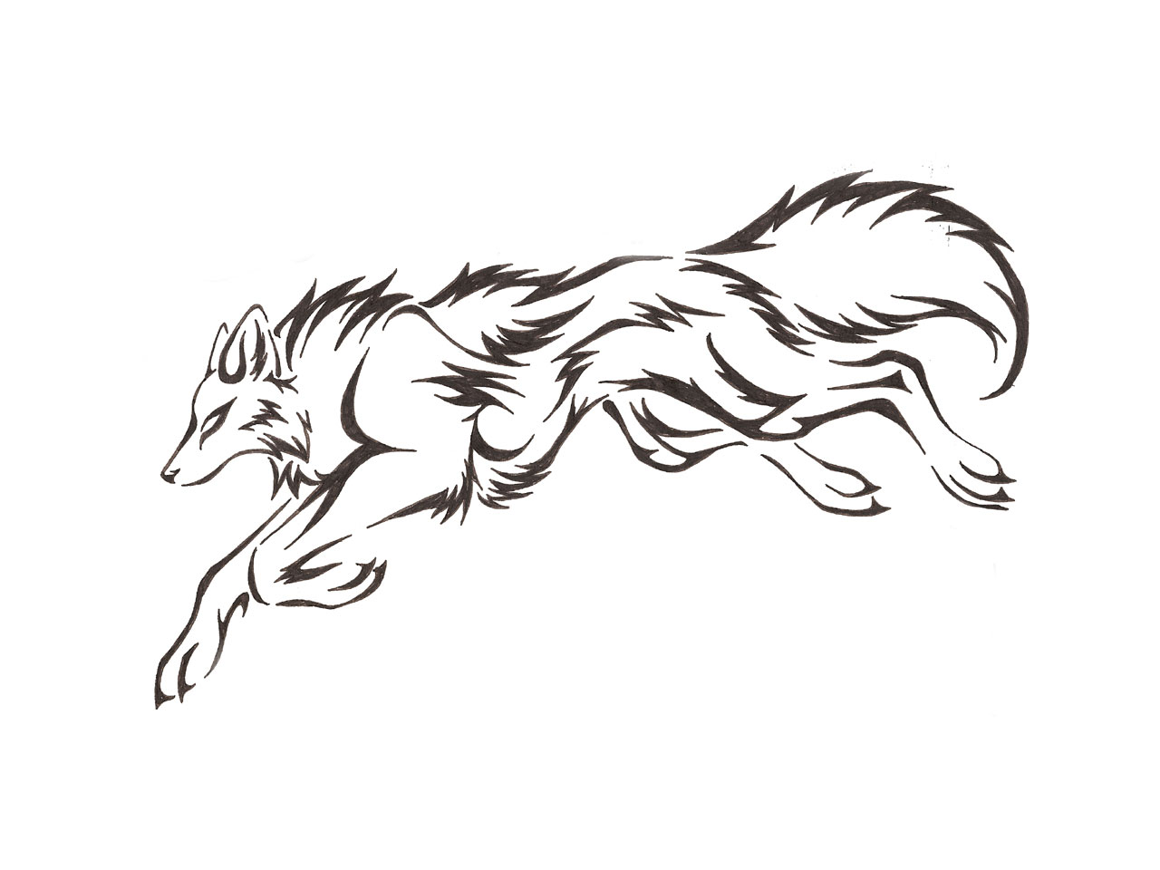 Wolf Outline Drawing