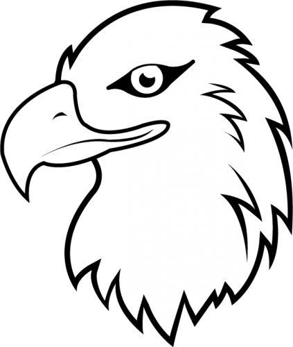 Eagle head line drawing