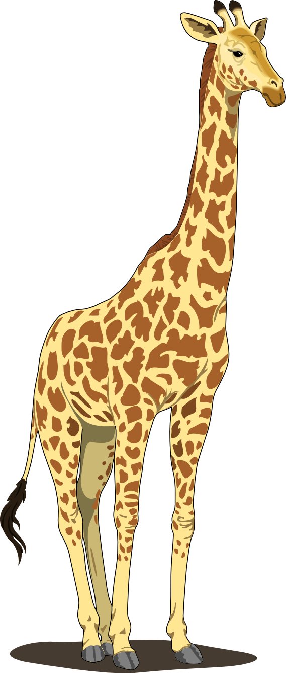 Artfavor Giraffe 2 Scalable Vector Graphics SVG Clip Art ...