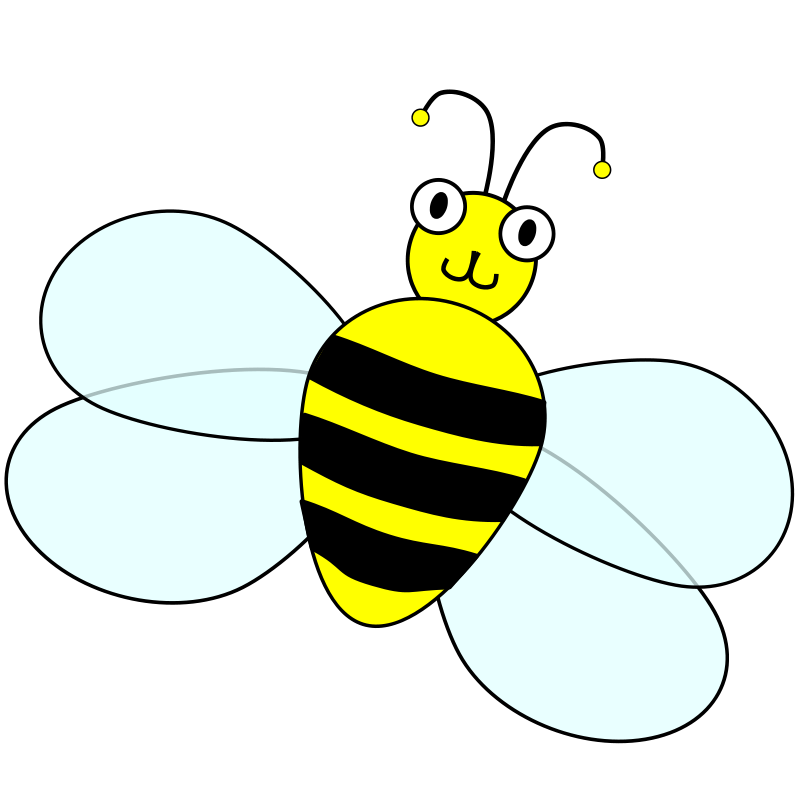 Picture Of Bee
