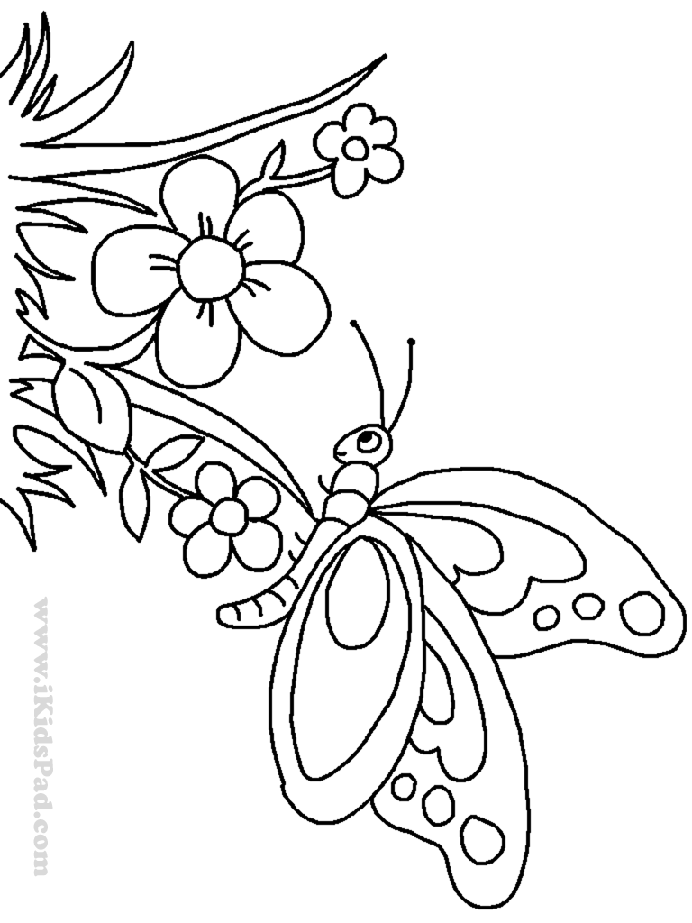 Cute Butterfly Line Drawing - Cliparts.co