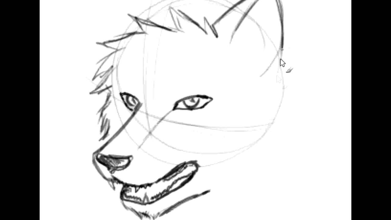 Scribble Drawing Easy : Easy drawings of wolves faces imgkid the image