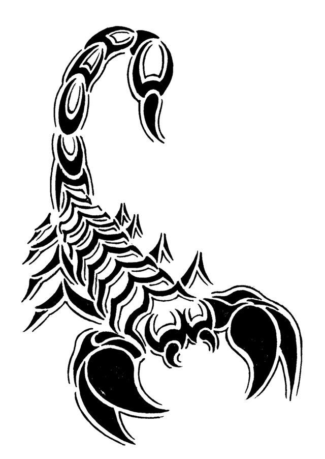 Hawaiian Turtle Clip Art Cliparts Co