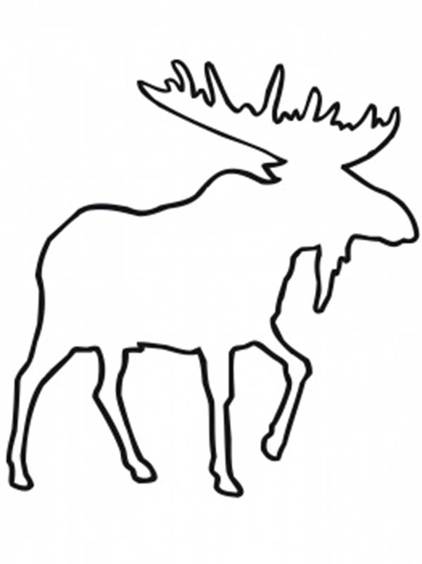 Moose head drawing outline - photo#3
